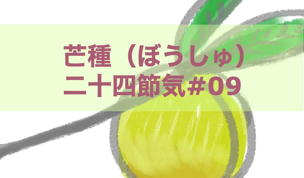芒種(ぼうしゅ)二十四節気